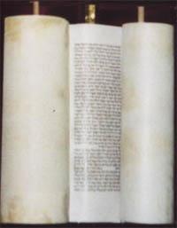 Свиток Пятикнижия Моисея (Торы)